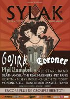 2014.08.10 - SYLAK OPEN AIR, Saint Maurice De Gourdans (France)